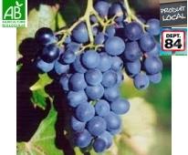Raisin Noir Bio de Provence 2kg