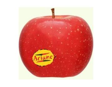 Pomme Ariane Bio 1kg