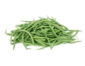 haricot vert de provence bio 500g sur courses saveurs com. Black Bedroom Furniture Sets. Home Design Ideas