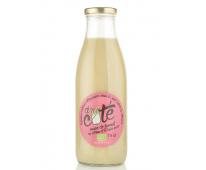 Soupe Bio Fenouil au citron et à l'anis vert