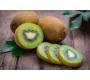 Kiwi Bio de Provence 500g