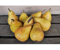 "Poire Harrow sweet ""Conversion"" Bio 1kg"