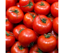 Tomate ronde bio 1kg