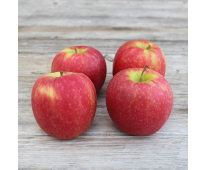 Pomme Fuji Conversion Bio de Provence - Mas Daussan