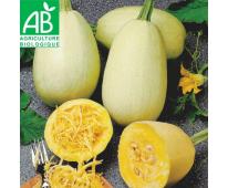 Courge Spaghetti Bio des Alpes