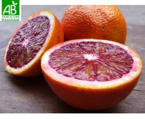 Orange Bio Moro (sanguine) 1kg