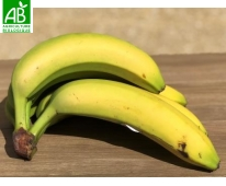 Banane Bio Equitable 2kg