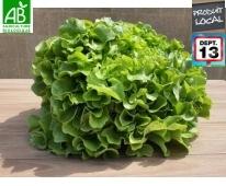 Salade Bio de Provence du moment