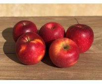Pomme Early red  Bio de Provence 1kg