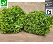 Salade bio de Provence lot de 2